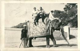 Nepal, - Elefanten