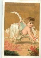 Chromos Réf. A826. Enfant, Coquillage - Chromos