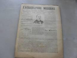 L´Agriculture  Moderne  N ° 85 15 Aout 1897 - Livres, BD, Revues