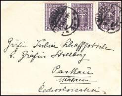 Austria 1924, Small Format Cover - 1918-1945 1. Republik