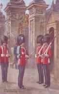 Cp , MILITARIA , Irish And Grenadier Guards At Buckingham Palace - Régiments
