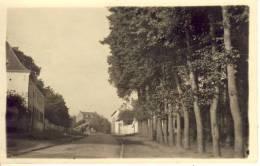 Hoeselt  Fotokaart (dorpszicht)  Zeldzaam! - Hoeselt