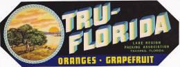 Tru Florida Citrus Lake Region Packing Association Tavares Florida Vintage Fruit Label - Fruits Et Légumes