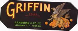 Griffion Brand Oranges Herlong & Company Leesburg Florida Vintage Fruit Label - Fruits Et Légumes