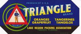 Triangle Brand Citrus Lake Region Packing Association Tavares Florida Small Vintage Fruit Label - Fruits Et Légumes