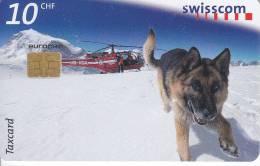 SVIZZERA SWISSCOM TAXCARD KNECHT CANE 10 CHF Us. PASTORE TEDESCO - Dogs