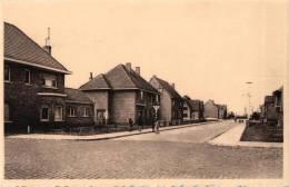 BELGIQUE - FLANDRE ORIENTALE - ASSENEDE - Nieuwe Straat. - Assenede