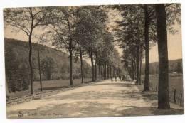 23885  -  Bande  Pont  Des  Pourcay - Nassogne