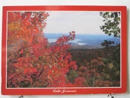 Carte Très Peu Courante - Etats Unis - Caroline Du Sud - Le Lac Jocassee - Scan Recto-verso - Non Classés