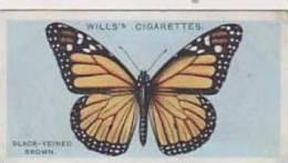 Wills Vintage Cigarette Card British Butterflies No. 13 Black Veined Brown 1927 - Wills
