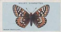 Wills Vintage Cigarette Card British Butterflies No. 24 Marsh Fritillary 1927 - Wills