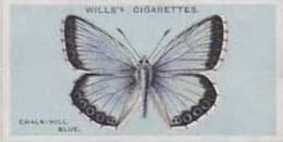 Wills Vintage Cigarette Card British Butterflies No. 5 Chalk Hill Blue 1927 - Wills