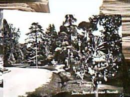 IMOLA -BOLOGNA-PARCO ACQUE MINERALI VB1958  EE14081 - Imola