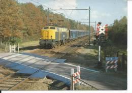 TRAIN - LOCOMOTIVE 1212 - Eisenbahnen