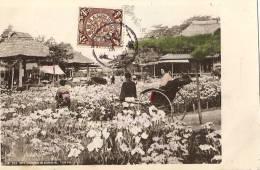 TOKYO - Iris Garden In HORIKIRI +++++ Vers Boulogne-su-Seine, FRANCE +++ CHINESE Imperial POST +++ - Tokyo