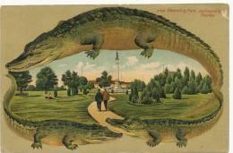 Jacksonville Hemming Park S 597 Edit Langsdorf Alligator Embossed Frame Crocodile Gaufrée - Jacksonville