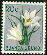 RUANDA URUNDI, 1953, FLORA, FIORI, FLOWERS, VELLOZIA, FRANCOBOLLO NUOVO (MLH*), Scott 116, YT 179, Bel 179 - Ruanda