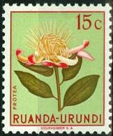 RUANDA URUNDI, 1953, FLORA, FIORI, FLOWERS, PROTEA, FRANCOBOLLO NUOVO (MLH*), Scott 115, YT 178, Bel 178 - Ruanda