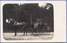 COACH With Older Couple, Old Photo Card In 1900? After Running From Dresden?; KUTSCHE Mit älterem Paar, Alte ... - Persönlichkeiten