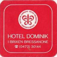 ITALY BRESSANONE HOTEL DOMINIK VINTAGE LUGGAGE LABEL - Hotel Labels