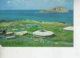 AERIAL VIEW SEA LIFE PARK     OHL - Honolulu