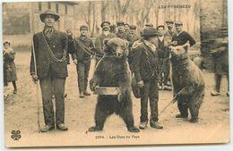 DEP 65 LES PYRENEES LES OURS DU PAYS MONTREURS D'OURS MTIL N° 2374 - France