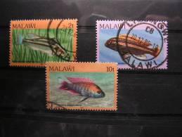 == Malawi Fische Lot - Malawi (1964-...)