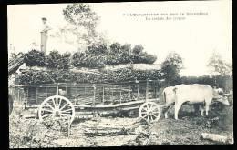 FOLKLORE BOURGOGNE DIVERS / L'Exploitation Des Bois, Rentrée Des écorces / - Bourgogne