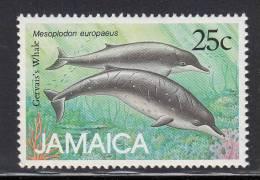 Jamaica MNH Scott #684 25c Gervais´s Whale (Mesoplodon Europaeus) -  Marine Mammals - Jamaique (1962-...)