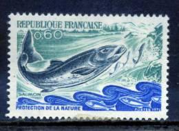 FRANCE Francia / Fish Fische Pez Salmon / Gq03 - Pesci