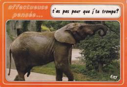 CPSM ELEPHANT T AS PEUR QUE JE TE TROMPE ? HUMOUR - Elefanti