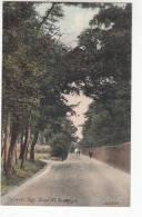 Old Postcard Pegwell Bay Road Near Ramsgate (pk9796) - Ramsgate