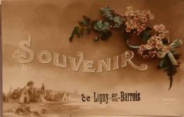 CPA  Souvenir De Ligny En Barrois (c 832) - France