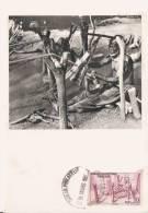 DAHOMEY TISSERANDS 1952 'CARTE MAXIMIM PUBLICITAIRE IONYL LABOS LA BIOMARINE DIEPPE) - Dahomey