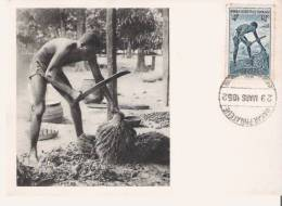 DAHOMEY EGRENEUR DE PALMISTE 6911 (CARTE MAXIMUM PUBLICITAIRE IONYL LABOS BIOMARINE DIEPPE) 1952 - Dahomey