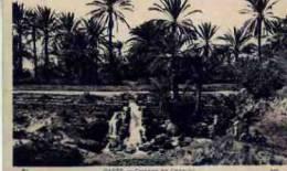 GABES       CASCADE DE CHENINI ( A OBSERVER, GROUPE D\\'ENFANTS SE RAFFRAISSANT  SOUS LES PALMIERS - Tunisie