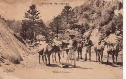AUVERGNE PITTORESQUE. Paysage D'Auvergne.Vaches Et Bouvier. Idéal - Auvergne