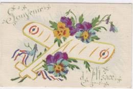 67-SOUVENIR  D'ALSACE   (avec Avion Et Fleurs Dessinés)   /  113 - Andere