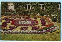 Greiz Blumenuhr 1962 Color - Greiz