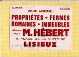 BUVARD  :Proprietés Fermes Domaines  M. HEBERT   LISIEUX  Grand Format - Agriculture
