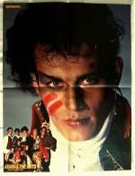 Musik Poster  - Adam & And The Ants  -  Rückseitig Boomer Hund  -  Ca. 40 X 51,5 Cm  -  Von Bravo  Ca. 1982 - Plakate & Poster