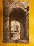 Carte Postale - JOYEUSE (07) - Le Barry - Vieille Porte Des Remparts (35/991) - Joyeuse