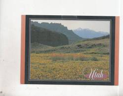 BT4405 Fremony River Valley Utah    2 Scans - Autres