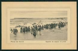 PÓVOA DO VARZIM / PORTO / PORTUGAL. Postal Apanha De Algaço (Moliço) Na Praia. Old Postcard - Porto