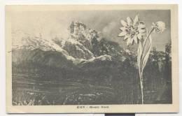 3664-KRN-MONTE NERO(SLOVENIA)-1922-FP - Slovénie
