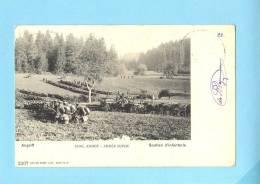 ARMEE SUISSE Schweiz Armata Svizzera Infanterie , Tireur Fusil. Soutien D'Infanterie. Old Postcard - Unclassified