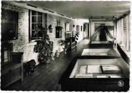 Damme, Museum St Jan, Toonzaal Der Antikwiteiten (pk9866) - Damme