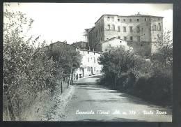 CARNAIOLA ( Terni) Viale Piave Cartolina  Viaggiata 1963 Francobollo Asportato - Altre Città