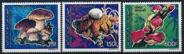 Comores Komoren Mushrooms Pilze Set (3) °BM0194 MNH - Paddestoelen