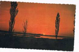 Champlain Sunset - Cartes Modernes
